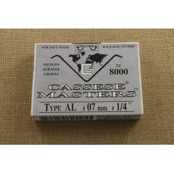 Painting TN0260 4*6