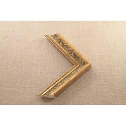 Medinis profilis F387.760