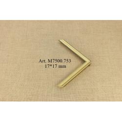 Medinis profilis F322.141