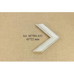 Medinis profilis F388.760