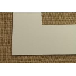 Plastic Moulding 501-0199.01