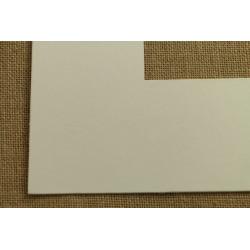 Plastic Moulding 501-0199.03