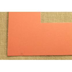 Plastikinis profilis G352-1505